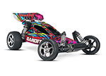 Hawaiian Bandit: 1/10 Scale Off-Road Buggy with TQ 2.4GHz radio system