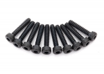 8167 Screws, 2x10mm cap-head, self-tapping (hex drive) (10)